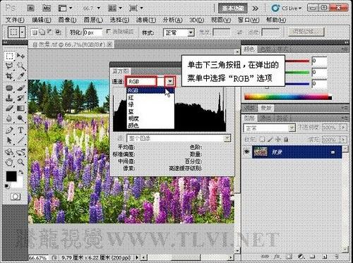 ps使用直方图分析图像色彩