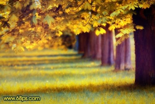 photoshop把绿荫的树林制作成秋天的金黄色