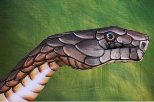 艺术家手上画出动物世界
