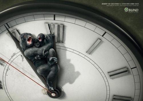 保护动物公益广告3