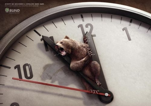 保护动物公益广告1